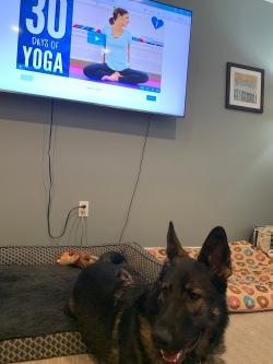 Covid 19 Yoga